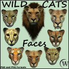 Feline lovers will delight in this set of wild cat faces showing some of today's most fearsome predators with such loveable faces. This collection features a set of  eight (8) hi-res PNG files with transparency.