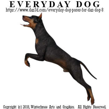 JUMPING Dog from Everyday Dog Poses