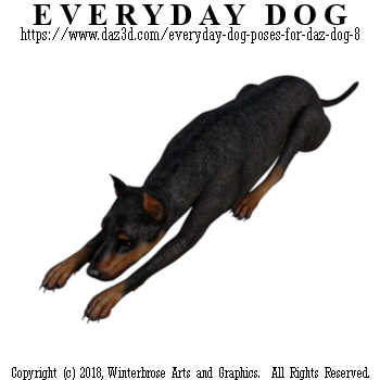 LAYING Dog from Everyday Dog Poses