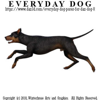 RUNNING Dog from Everyday Dog Poses
