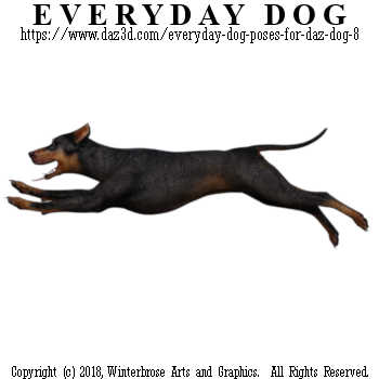 SPRINTING Dog from Everyday Dog Poses