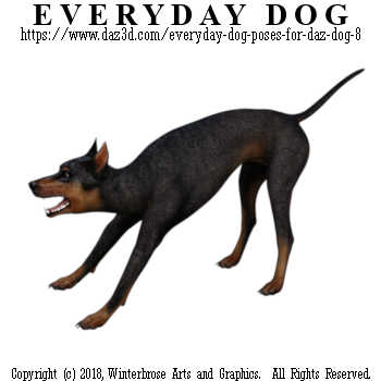 TUGGING Dog from Everyday Dog Poses